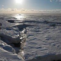 Северодвинск. Весна. Белое море. Солнечные блики :: Владимир Шибинский