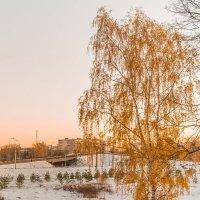 Осенний Рыбинск :: Евгений Кузьминов