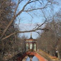 Крестовый мост :: Вера Моисеева