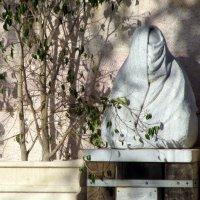 У стен Дворца Культуры :: Герович Лилия