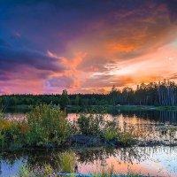Перед дождём. :: Александр Тулупов