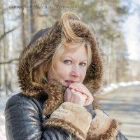 холодно... :: Надежда Шемякина