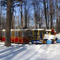 в зимнем парке :: георгий петькун