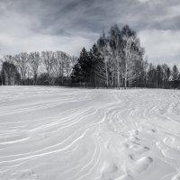 Начало марта :: Vladimir Beloborodov