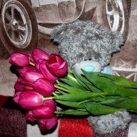Мои любимые мишки :: Таня Фиалка