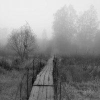 Мостик в туман :: Михаил Смуров