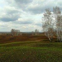 Опять весна на белом свете... :: nadyasilyuk Вознюк