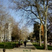 a spring day in Baku :: maxim