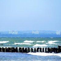 море в Зеленоградске :: Mavr -