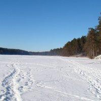 Замерзшее озеро :: Агриппина
