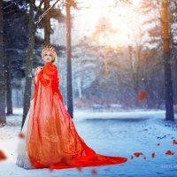 Belle :: Svetlana Nezus