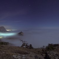 Новый Свет под туманом :: Роман Любимский