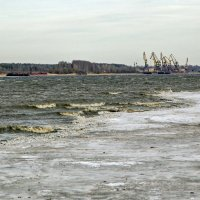 Непогода в конце марта...... :: Сергей Израилев