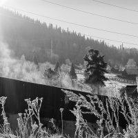 На восходе солнца :: Елена Лобанова