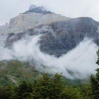 Гора в парке Торре-дель-Пайне :: Irina Shtukmaster