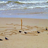 На берегу моря... :: Валерия Комова