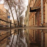 Весенние отражения :: Вера Моисеева