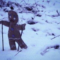 Frozen :: Maggie Aidan