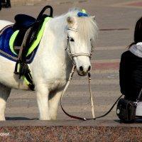 Просто пони... :: Анатолий Мартынюк