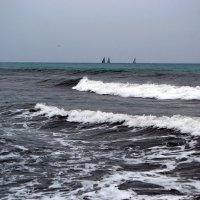 Дождь на море :: Nina Streapan