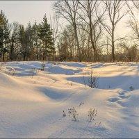 Мороз и солнце :: Любовь Потеряхина