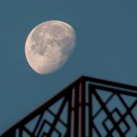 Луна над крышей :: Нина Агаева