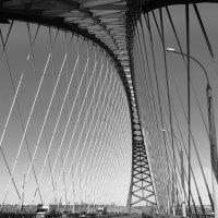 Хребет моста... :: Рустам Илалов
