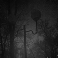 black :: Марина Морей