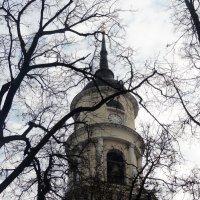 Колокольня Троицкого собора :: Peripatetik