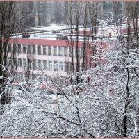 Вид с балкона :: Самохвалова Зинаида