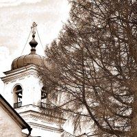 Колокольня :: Юрий Шувалов