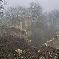 Адмиральские развалины :: Игорь Кузьмин