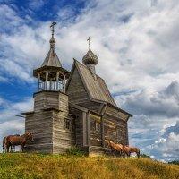 Лошади у Никольской часовни :: Евгений Мазилов