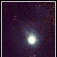 Луна. :: Fededuard Винтанюк