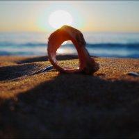 Это солнце, море, пляжи... :: Swetlana V