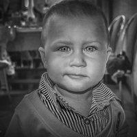 Глаза малыша :: Nikki Lashkevich