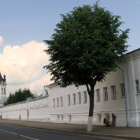 Богоявленский Анастасиин женский монастырь :: Tata Wolf