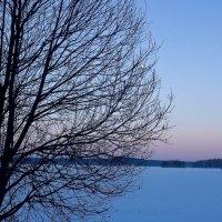 Синий вечер :: Светлана Игнатьева