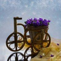 Весенний велосипедик :: Ирина Приходько