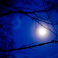 Ночь и тишина... :: Александр Ковшар