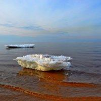 апрель Белого моря :: Елена Третьякова
