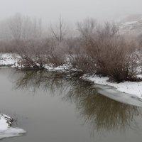 В тумане :: Dr. Olver  ( ОлегЪ )