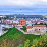 Вильнюс. Башня Гедиминаса :: Лёша