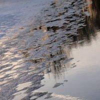 Вешние воды... :: Tatiana Markova