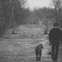 недама с собачкой :: Александр Гандкин