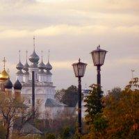 Муромские купола :: veilins veilins