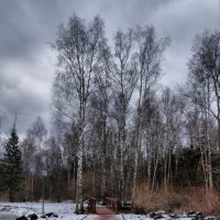 А у нас еще зима :: marmorozov Морозова