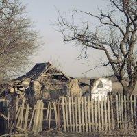 Одинокая старость..(2) :: Ксения Довгопол