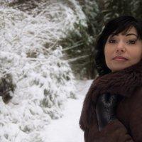 Зимняя красавица :: Юлия Плешакова