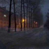 Поземка :: Валерий Талашов